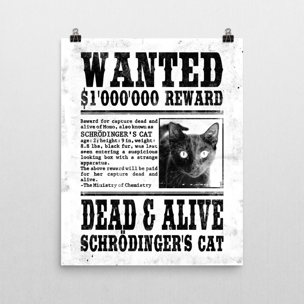 Schrödinger's Cat Wanted Poster 16x20