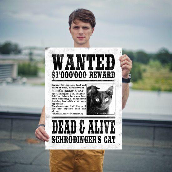 Schrödinger's Cat Wanted Poster 18x24 Moritz
