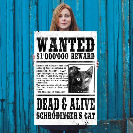 Schrödinger's Cat Wanted Poster 24x36 Mareike