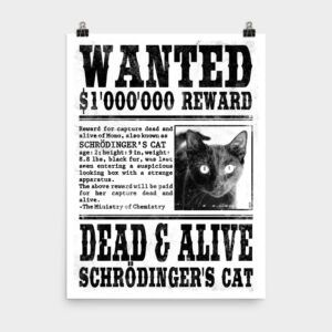 Schrödinger's Cat Wanted Poster 18x24