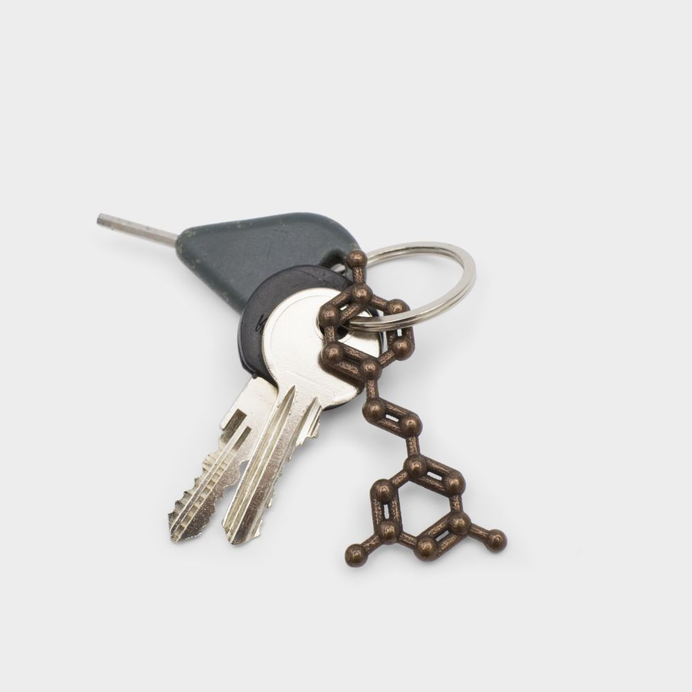 Resveratrol Molecule Keychain Bronze Steel 3D