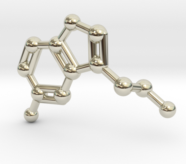 Serotonin Molecule Necklace 14k White Gold
